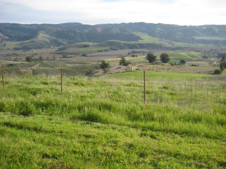 83 Acres in the Sta. Rita Hills AVA